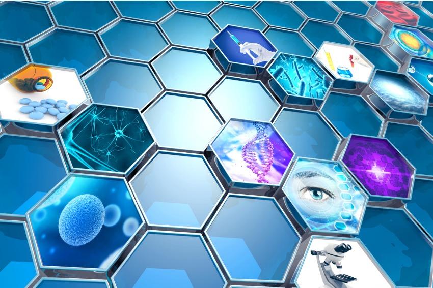 Des perspectives biotechnologiques prometteuses pour les détenteurs de FNB