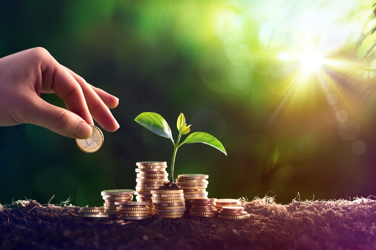 Carbon credits: a new trend for funds?